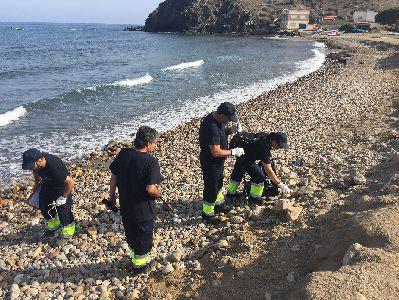 15 desempleados lorquinos pertenecientes a un curso desarrollado por el Ayuntamiento y el SEF realizan tareas de retirada de residuos en las playas de Puntas de Calnegre