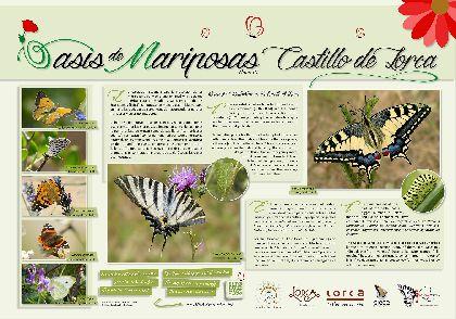 El Castillo de Lorca entra a formar parte del Proyecto ''Oasis de Mariposas'' impulsado por la Asociación Española para la Protección de las Mariposas y su Medio