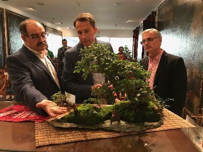 El Centro de Ferias y Congresos acoge del 19 al 21 de octubre el XXVI Congreso Nacional de Bonsái que reunirá a los mayores expertos nacionales
