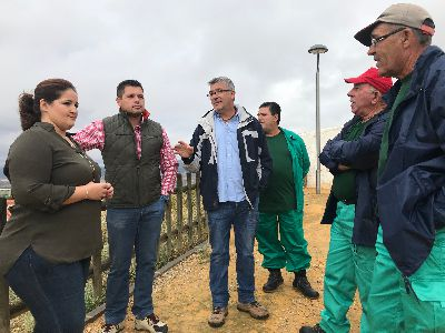 9 trabajadores mejoran las zonas verdes del mirador del depósito de La Paca gracias al Programa de Fomento del Empleo Agrario puesto en marcha por el Ayuntamiento