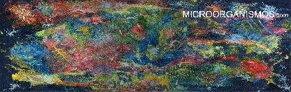 33 alumnos de la Escuela Municipal de Artes Plásticas exponen ?Microorganismos?, en el Palacio de Guevara