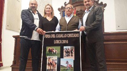 El Huerto de la Rueda acoge este fin de semana la Feria del Caballo Cruzado en la que participarán ganaderos de Murcia, Alicante, Almería y Albacete