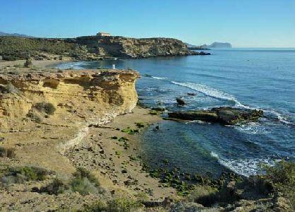 El Ayuntamiento dotará por primera vez a sus playas de  una ordenanza municipal que mejorará la convivencia de sus usuarios