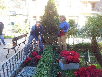 Un millar de ejemplares de plantas y flores t picas for Ornamentacion para navidad
