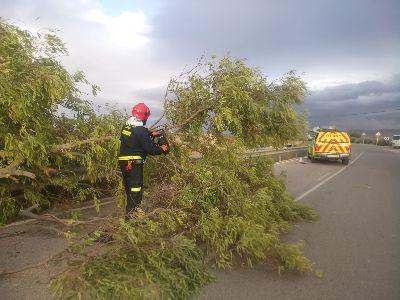 Lorca fue el segundo municipio más afectado de la Región por el temporal de viento, solo superado por Murcia