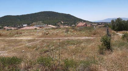 El Ayuntamiento creará un jardín botánico con zona recreativa en Zarzadilla de Totana y un espacio verde en La Paca