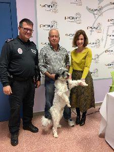 El microchip de un perro perdido permite a los servicios municipales del Ayuntamiento de Lorca devolverlo a sus dueños