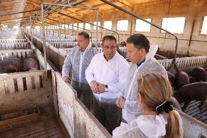 El Alcalde destaca el enorme esfuerzo realizado por los profesionales del porcino, que han impulsado a Lorca como referencia internacional en producción e investigación