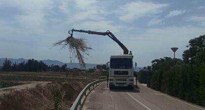El Ayuntamiento de Lorca lleva a cabo la limpieza del tramo urbano de la rambla Ylorci situada en la pedanía de Tercia