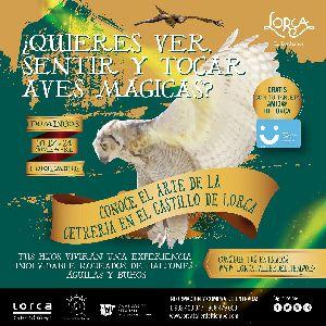 La concejalía de Turismo, a través de ''Lorca Taller del Tiempo'', da a conocer el arte de la cetrería en el castillo de Lorca