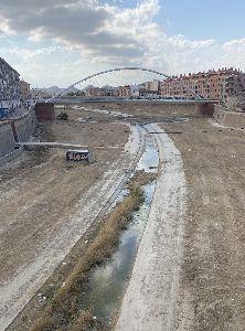 El Ayuntamiento concluye los trabajos de desbroce del tramo urbano del río Guadalentín
